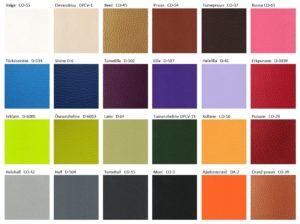 Kunstnaha kanga värvivalik